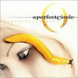 A Perfect Circle - Thirteen Step