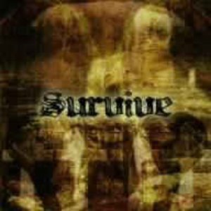 (J-Rock)Survive - Survive