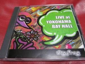 (J-Pop)Big Frog - Live At Yokohama Bay Hall